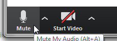The bottom left corner of a window with two icons: Mute, with an image of a microphone, and Start Video, with an image of a video camera, which is crossed out with a red line, indicating that the video is inactive.