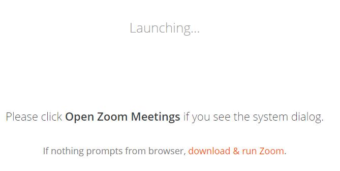 """Zoom """"Launching"""" window"""