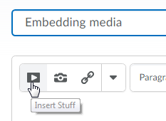 insert stuff button